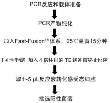 CP-C9NU-01