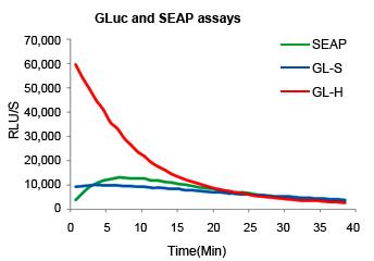 GLuc and SEAP assays